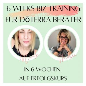 6 Week BIZ-Training